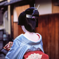 detail neck and hair Maiko Kyoto